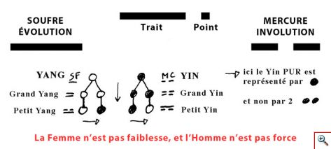 point_trait_yin_yang1c.jpg