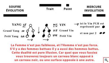 point_trait_yin_yang1c_dualite.jpg